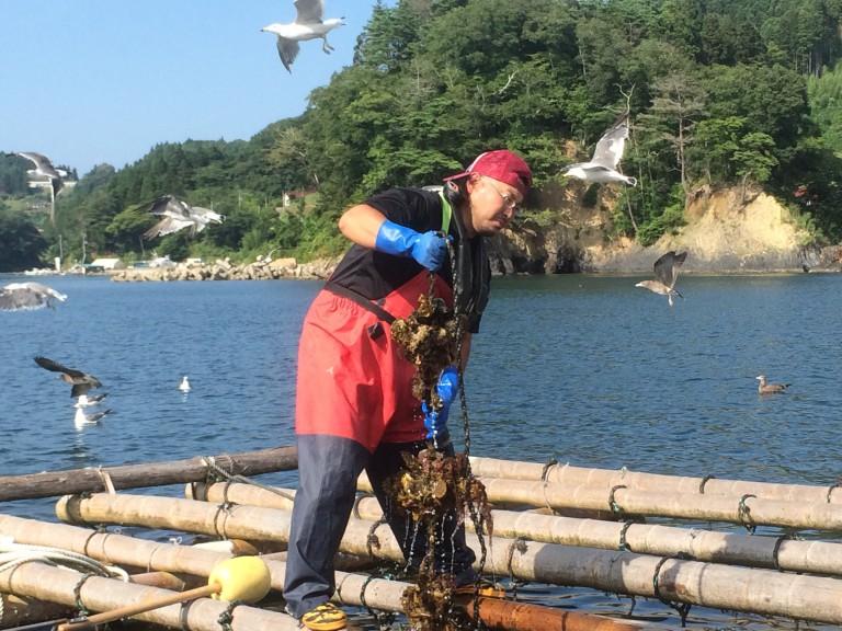 【漁師希望者向け / 初心者歓迎】この春、漁師のがっこうが開校します。